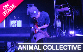 animal-collective-01